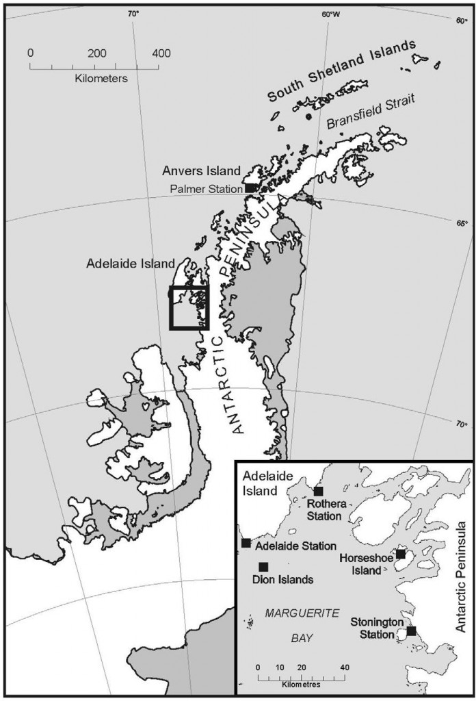 Dion-Islands